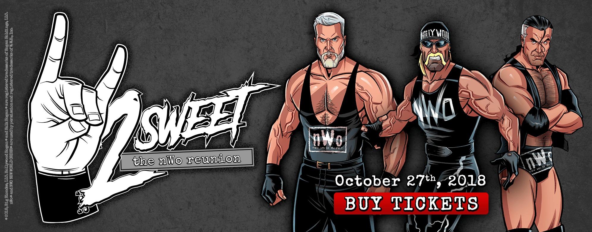 2 Sweet Tour Header Banner with Scott Hall, Kevin Nash, and Hollywood Hulk Hogan